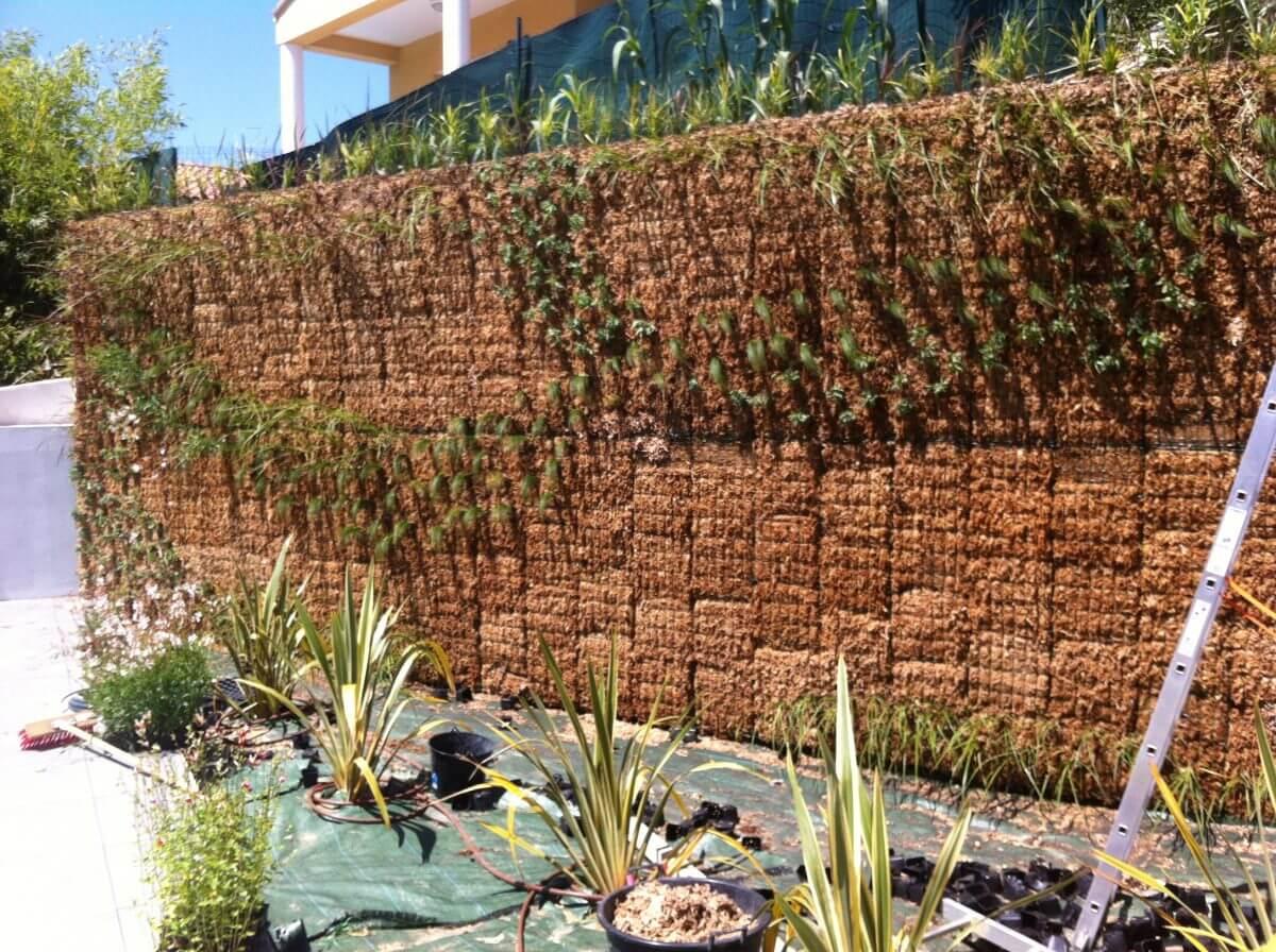 Comment on plante son kit mur v g tal - Fabriquer son mur vegetal ...
