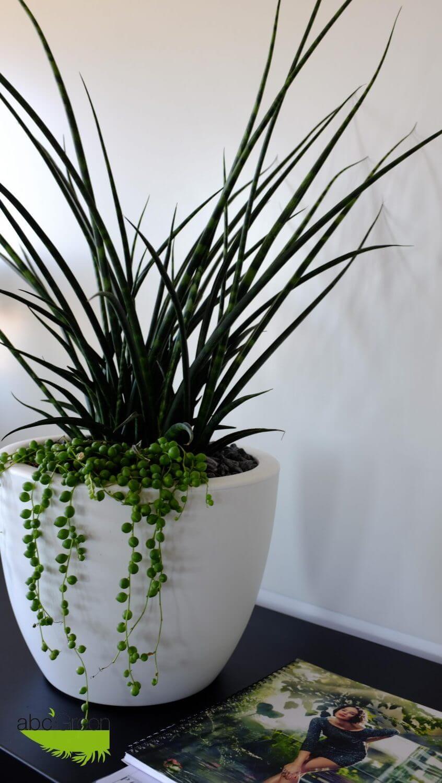 Mur v g tal sans entretien polygone kit mur vegetal for Entreprise paysagiste 78