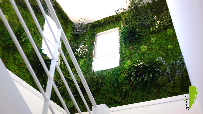 mur végétaux Montpellier stabilisées