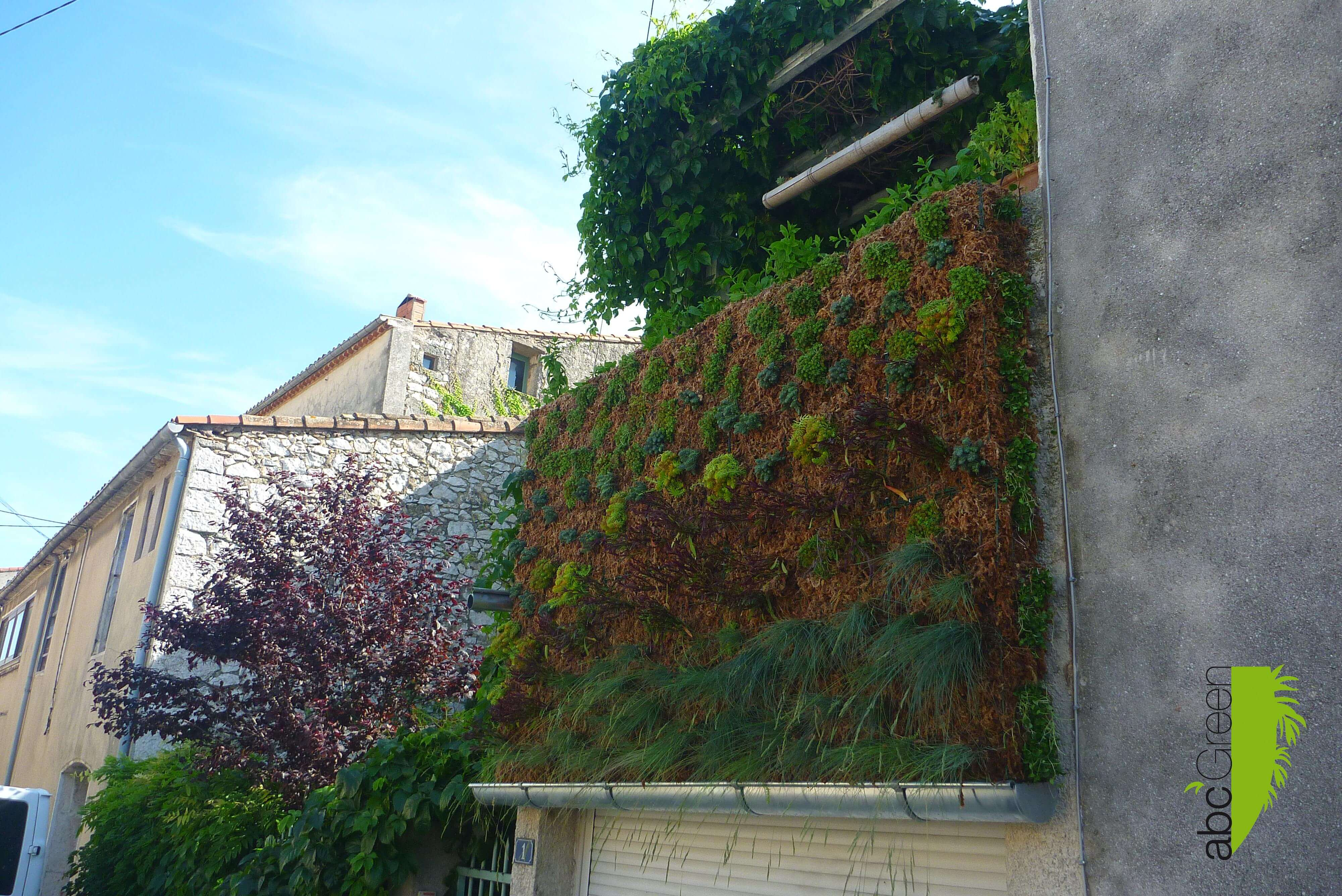 mur végétal Montpellier