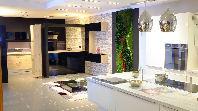 mur vegetal bureaux