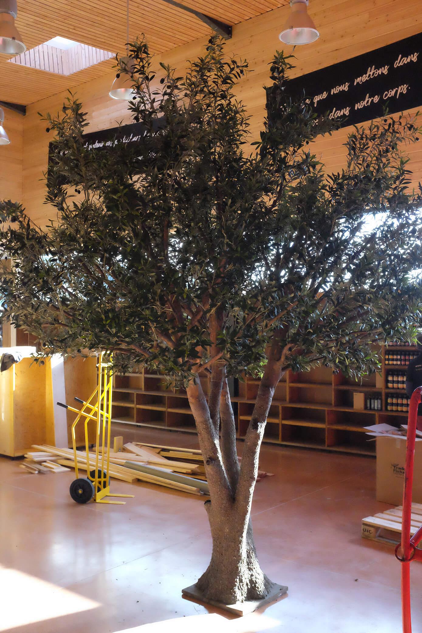 olivier abc green