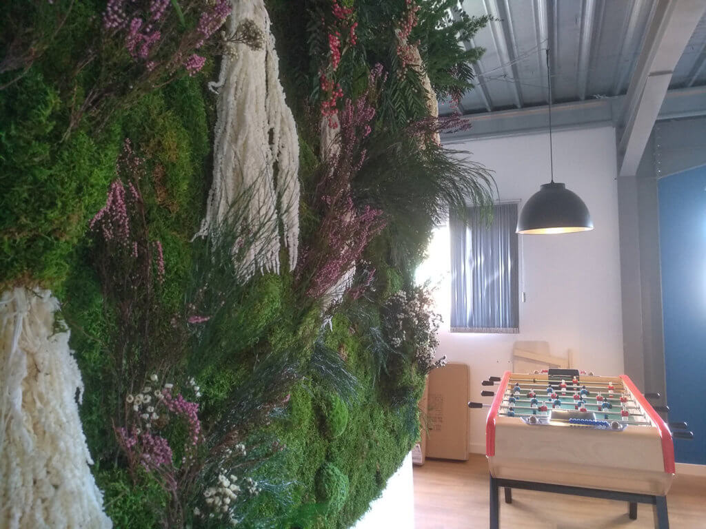 mur vegetal sete occitanie