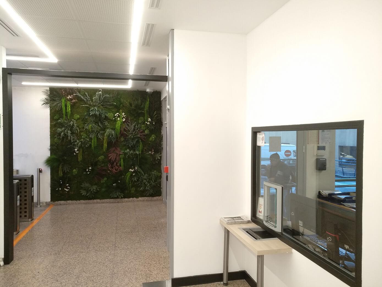 mur végétaux 34